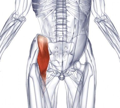 Воспаление подвздошно-поясничной мышцы